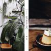 |台南| 裏葉:尋覓日常綠洲,在療癒空間細心品嚐心意滿載的美味料理