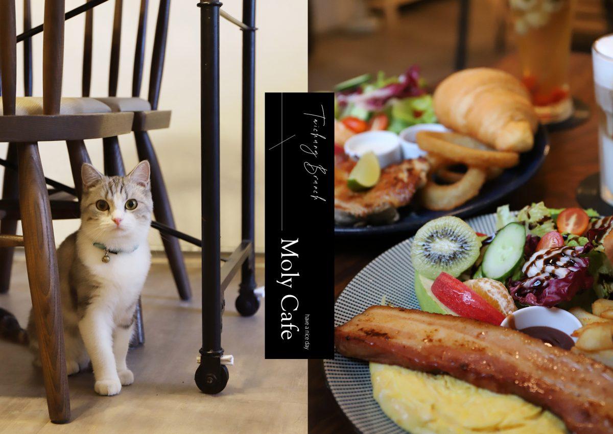 吃吃| 台中小葉茉莉 MOLY CAFE 早午餐控必吃,藏身在老屋中的巷弄私房美食
