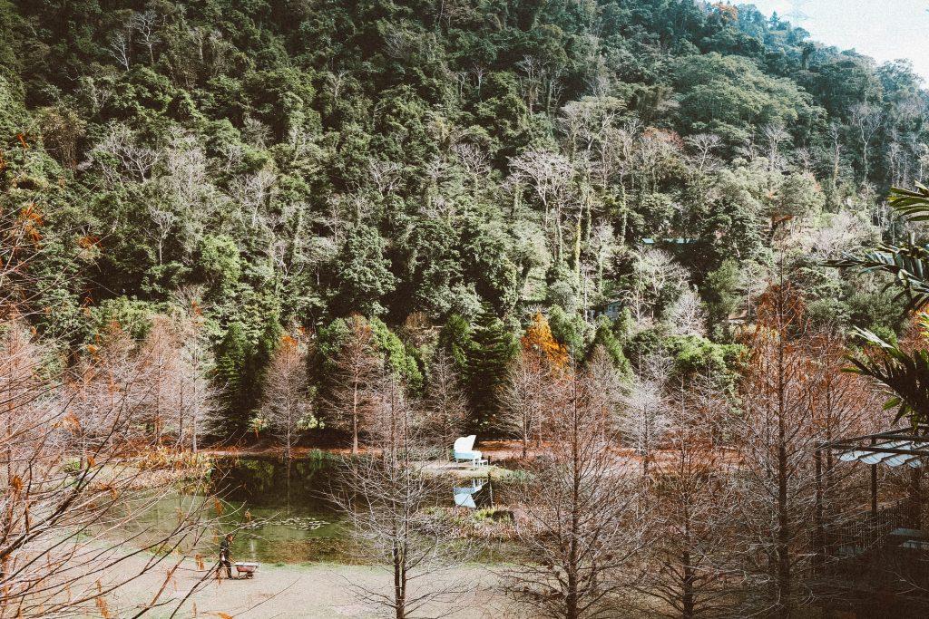 南庄雲水森林